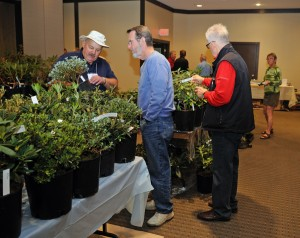 Terry Richmond RZ-Plant sale_90