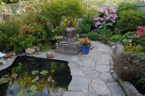 Peters' Garden_DSC6848